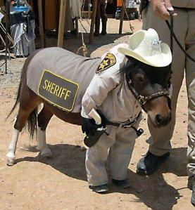 pony as sheriff